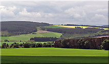 NH6454 : South from the edge of Tullich Wood by Julian Paren