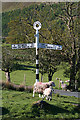 NY1717 : Old Style Signpost by Anne Burgess