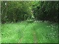 TL7033 : Walford's Lane, Finchingfield by Roger Jones