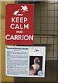 SE6083 : Keep Calm and Carrion by Pauline E