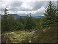 SD3296 : View of fells from Monk Coniston Moor, Grizedale Forest by Karl and Ali