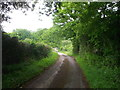 TQ5033 : High Weald Landscape Trail on Whitehouse farm lane by David Anstiss