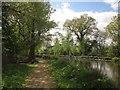 TQ0562 : Basingstoke Canal by Derek Harper