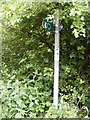 TM1241 : Footpath sign on Oakfield Road by Adrian Cable