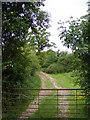 TM1241 : Footpath to Church Lane by Adrian Cable