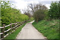 TQ6868 : Track, Cobham Park by N Chadwick