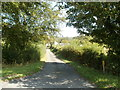SO3009 : Road to Green Court near Llanellen by Jaggery