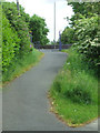 NS4264 : National Cycle Network Route 75 by Thomas Nugent