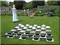 SE6779 : Lawn draughts by Pauline E