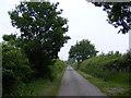 TM4682 : Primrose Lane, Clay Common by Geographer
