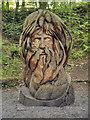 SK3455 : The Green Man, Crich Tramway Village Sculpture Trail by David Dixon