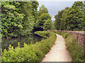SK3156 : Cromford Canal by David Dixon