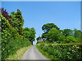 SJ5872 : Wood's Lane, Ruloe by John Topping