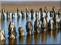 NX6548 : Shipwreck timbers in Nun Mill Bay by Walter Baxter