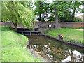 TQ2174 : Richmond Park: Beverley Brook by Dr Neil Clifton