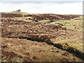 NB2835 : Fionn Allt Beag  by M J Richardson