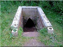 SP4808 : St Margaret's Well in Binsey by Steve Daniels
