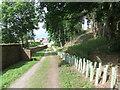 NY5045 : Track near Armathwaite by David Brown