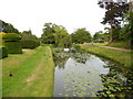 TQ4745 : Moat by Hever Castle by Paul Gillett