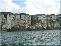 TA2272 : North Cliff, Flamborough Head by Christine Johnstone