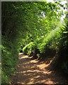 SS9228 : Heleball Lane by Derek Harper