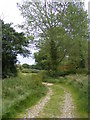 TM4180 : Footpath to The Causeway (School Road) by Adrian Cable