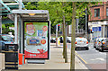 J3774 : Bus shelter, Strandtown, Belfast by Albert Bridge