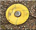 D4002 : Survey mark, Larne by Albert Bridge