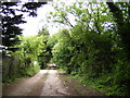 TM4078 : Scalesbrook Lane bridleway by Adrian Cable
