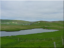 HU4429 : Pasture, and the head of Aith Voe at high tide, Cunningsburgh by Ruth Sharville