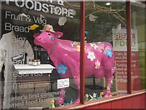SX9292 : The Real Food Store, Exeter by Derek Harper