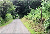 SJ2624 : Wern y Wiel at entrance to Pleasant Grove by John Firth