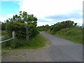 NZ2799 : Road through Druridge Bay Country Park by Oliver Dixon