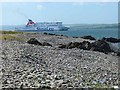 NX0572 : Stena Superfast VIII seen from Finnarts Bay by Oliver Dixon