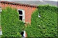 "J3372 : Former ""Botanic Lodge"" guest house, Belfast (2013-3) by Albert Bridge"