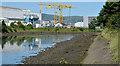 J3675 : The Connswater, Victoria Park, Belfast (2013-1) by Albert Bridge