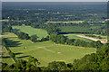 TQ2451 : Clears Farm paddocks by Ian Capper