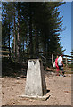 NH9862 : Culbin Trig Point by Anne Burgess