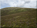 NN5672 : North-western slopes of An Sgùlan by William Starkey