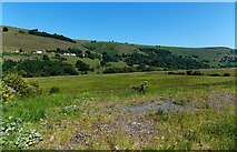 SO1506 : How green is my valley south of Tredegar by Jaggery