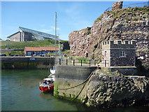 NT6779 : Coastal East Lothian : The Visitors' Berth, Victoria Harbour, Dunbar by Richard West