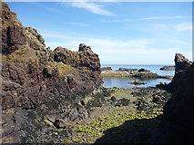 NT6779 : Coastal East Lothian : The Gripes, Dunbar by Richard West