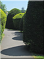 SK3341 : Shapes and shadows in Quarndon churchyard by John Sutton