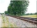TQ3729 : Bluebell Line near Horsted Keynes Station by Paul Gillett