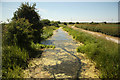 SK7129 : Grantham Canal by Richard Croft