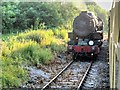 SK0749 : Churnet Valley Railway, Loop at Cauldon Low by David Dixon