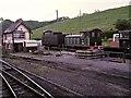 SJ9851 : Railway Sidings at Cheddleton by David Dixon