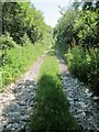 SW7518 : Footpath & track from Trelan Gate to Little Treleaver by Dr Duncan Pepper