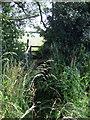 SP8126 : Footbridge on the path to Blackland Farm by Philip Jeffrey