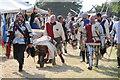 SO8831 : Tewkesbury Medieval Festival 2013 #20 by Philip Halling